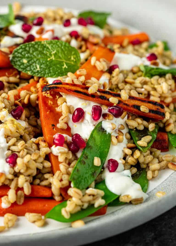 warm mediterranean barley salad on a plate with vegetables