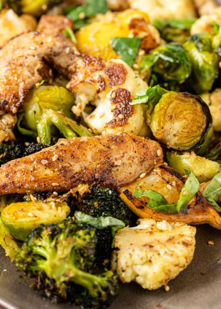 side view closeup: Turkish chicken saute with broccoli and brussel sprouts