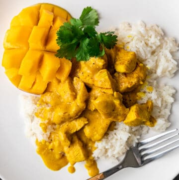 overhead: mango curry with chicken on bed of white rice