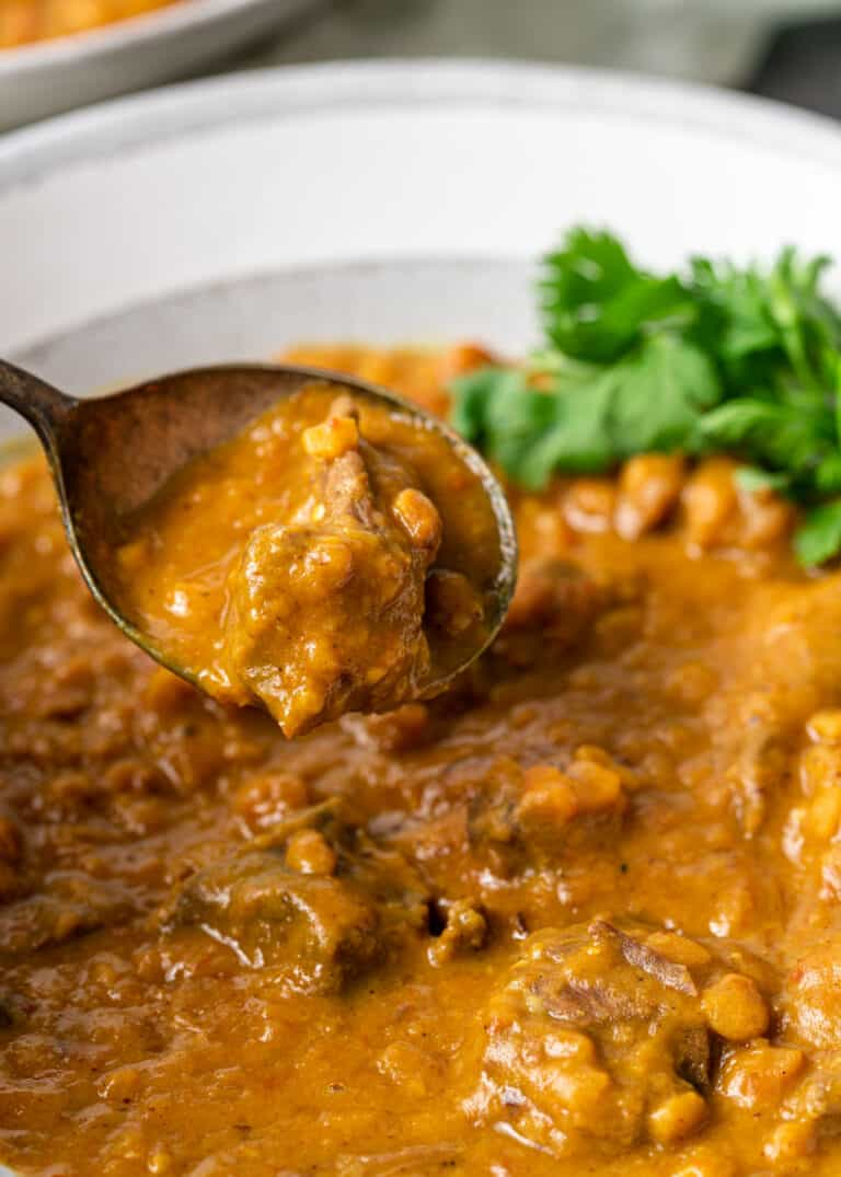 close up of spoon in bowl of indian lentil stew