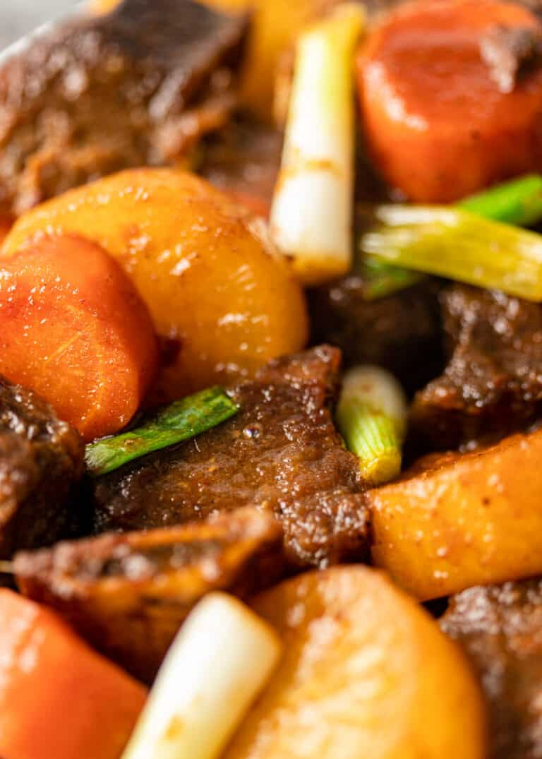 extreme close up of korean braised short ribs with root vegetables